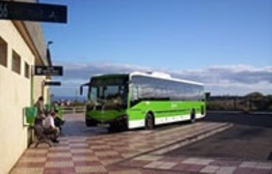 Bus 40 from Costa Adeje