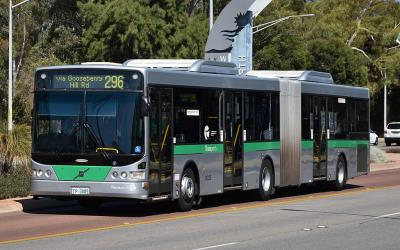 Articulated bus on route 296