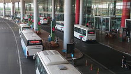 Airport Buses at Terminal 3