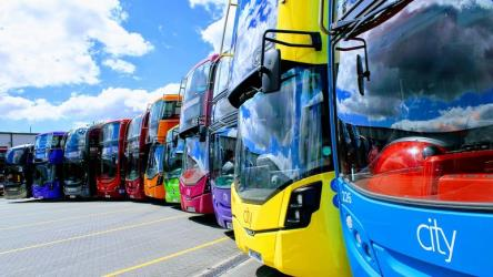 The colourful bus fleet