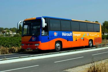 Herault Transport Bus
