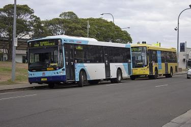 Hillsbus in differing liveries