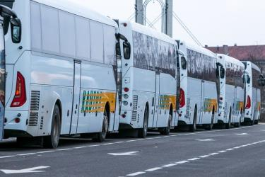 Fleet of Kautra buses