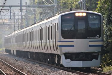 Yokosuka Line train exterior