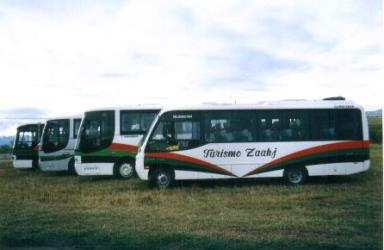 Buses Exterior