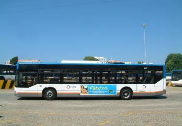 Standard bus side view