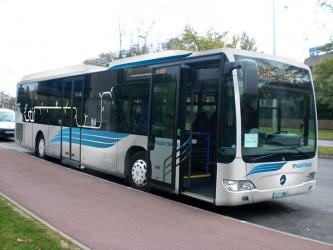 Albatrans Bus